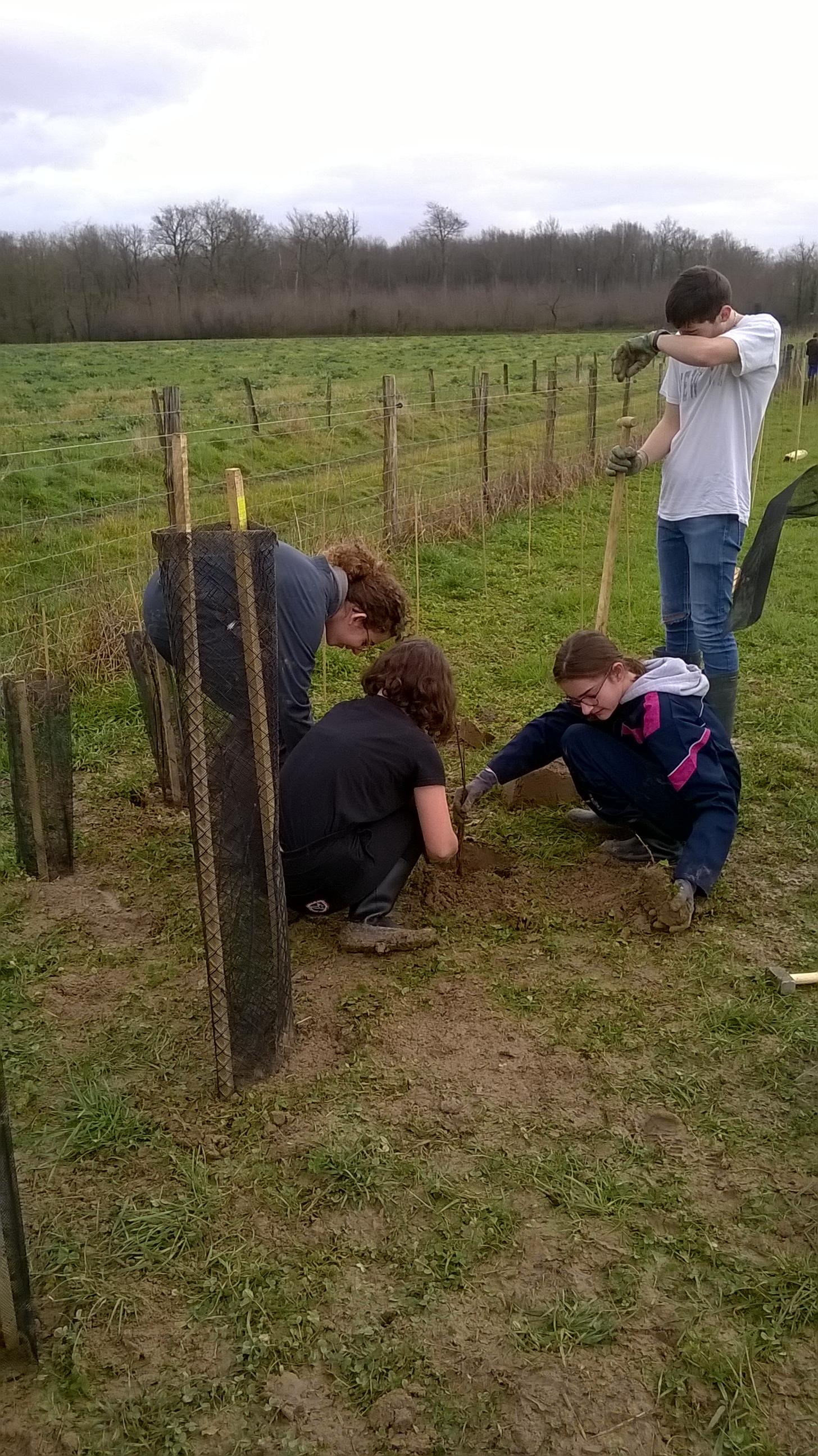 L'approche de l'agroforesterie en enseignement optionnel EATDD – 2/2